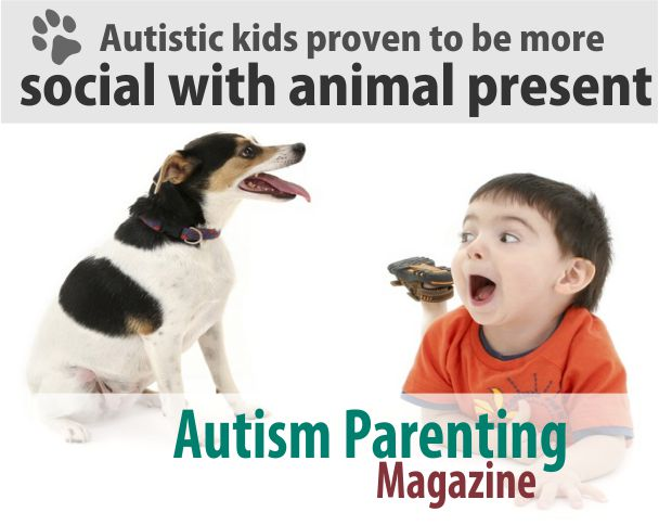 Autistic Social Animals