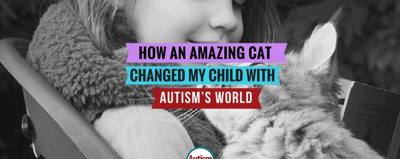 How an Amazing Cat Changed My Child with Autism's World