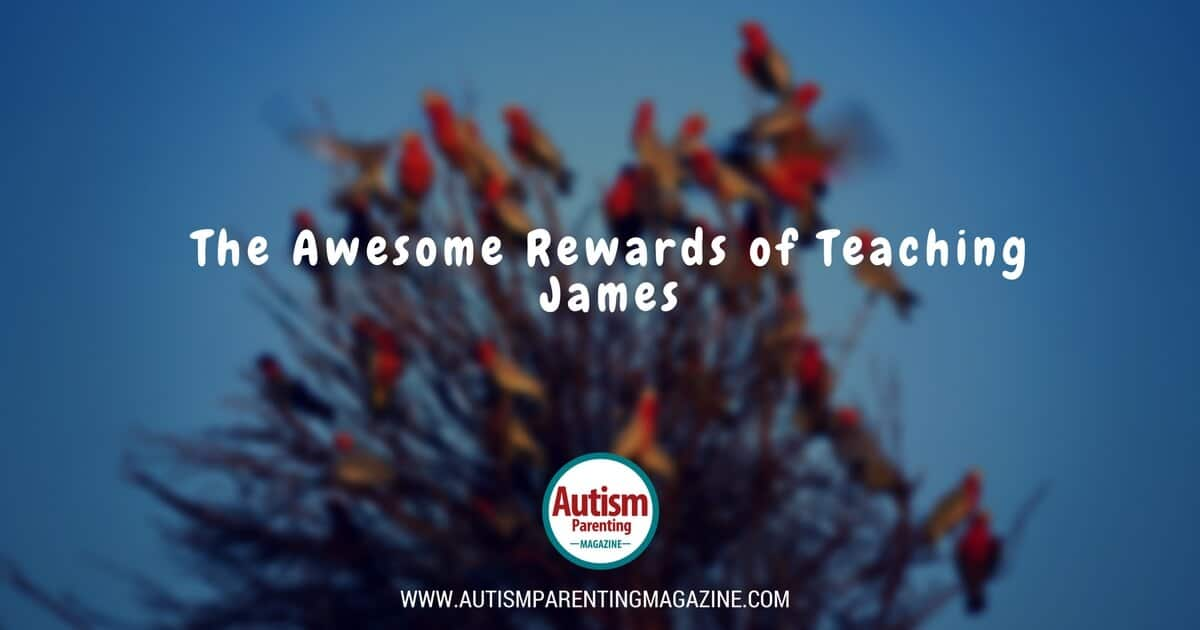 The Awesome Rewards of Teaching James https://www.autismparentingmagazine.com/rewards-teaching-james