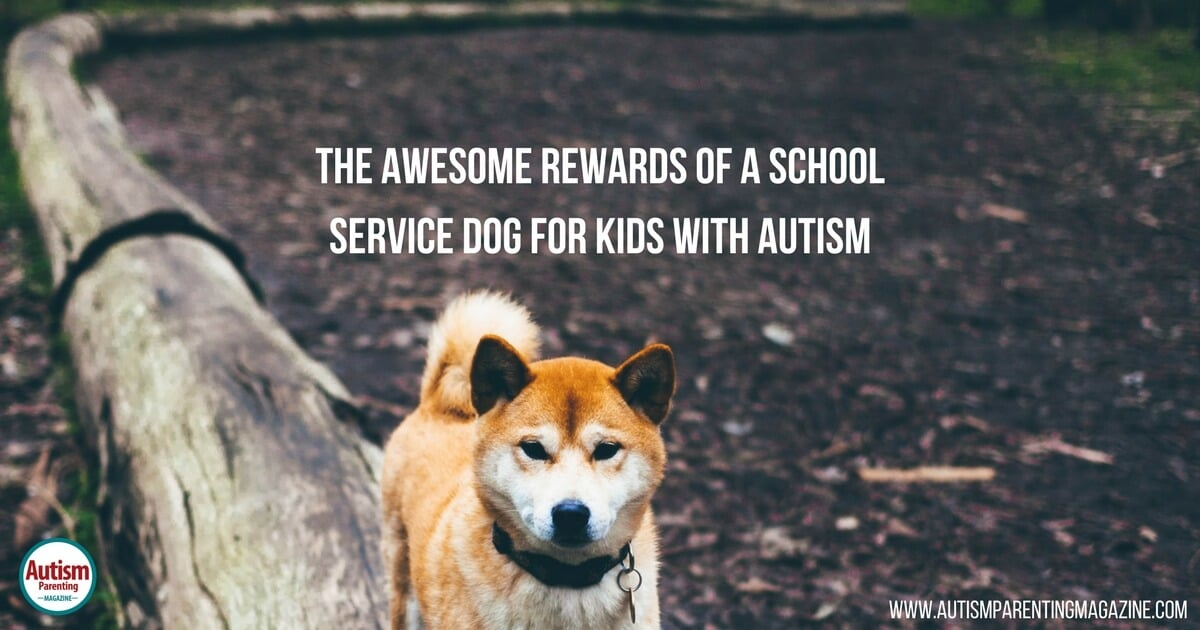 The Awesome Rewards of a School Service Dog for Kids with Autism https://www.autismparentingmagazine.com/service-dog-for-kids-with-autism