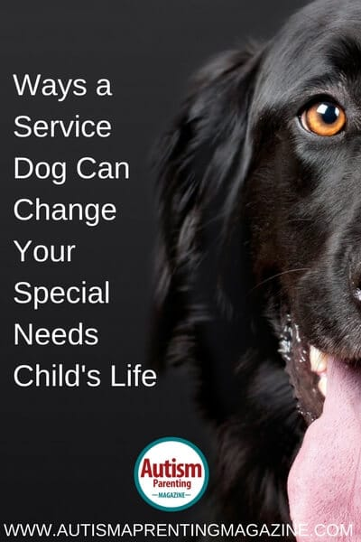 Ways a Service Dog Can Change Your Special Needs Child's Life https://www.autismparentingmagazine.com/service-dog-can-change-special-needs-childs-life