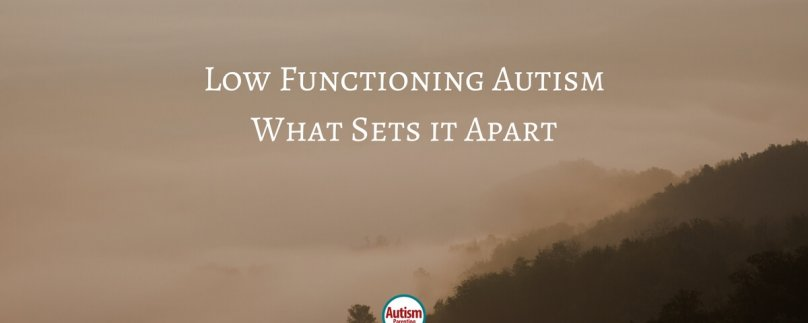 Low Functioning Autism – What Sets it Apart