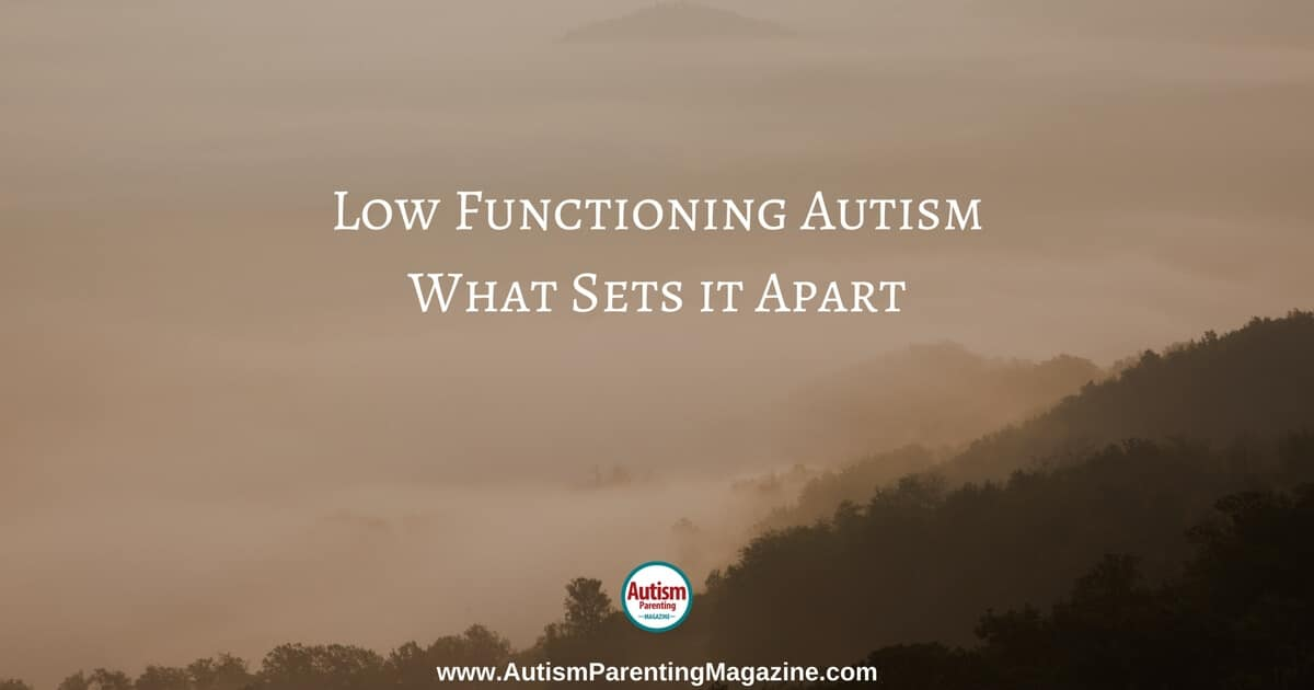 Low Functioning Autism What Sets it Apart https://www.autismparentingmagazine.com/low-functioning-autism