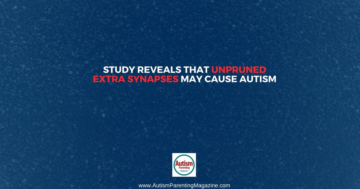 Study Reveals That Unpruned Extra Synapses May Cause Autism https://www.autismparentingmagazine.com/unpruned-extra-synapses-may-cause-autism