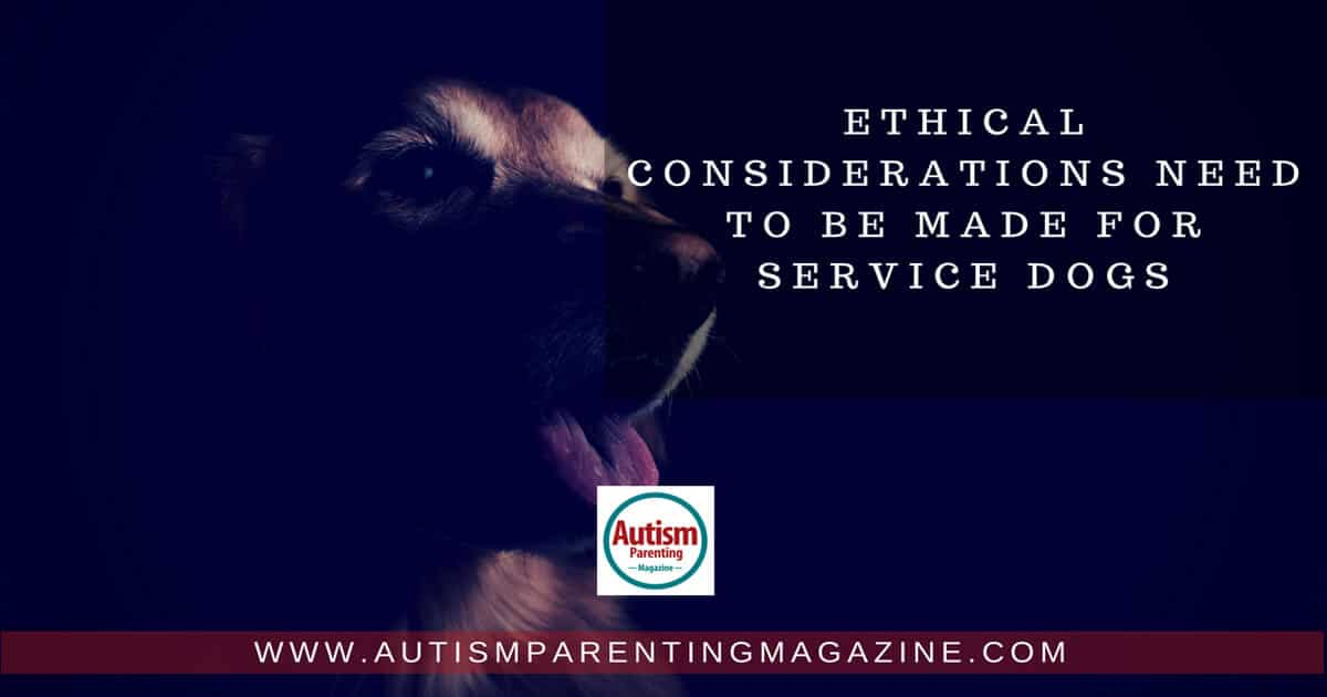 Ethical Considerations Need to Be Made for Service Dogs http://www.autismparentingmagazine.com/considerations-made-for-service-dogs/