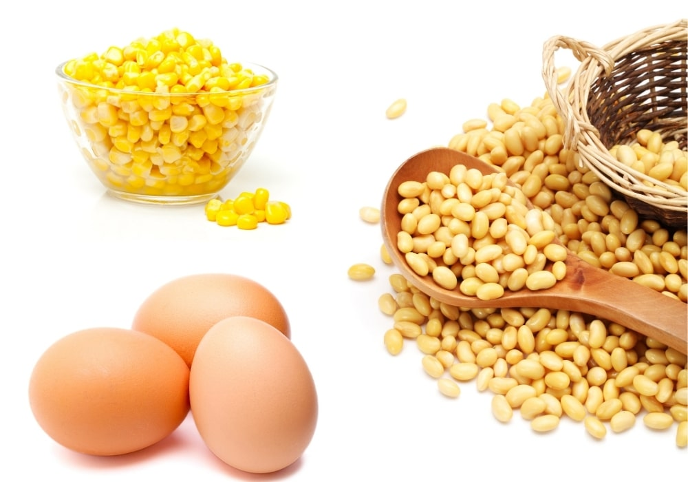 Allergens corn soy and eggs