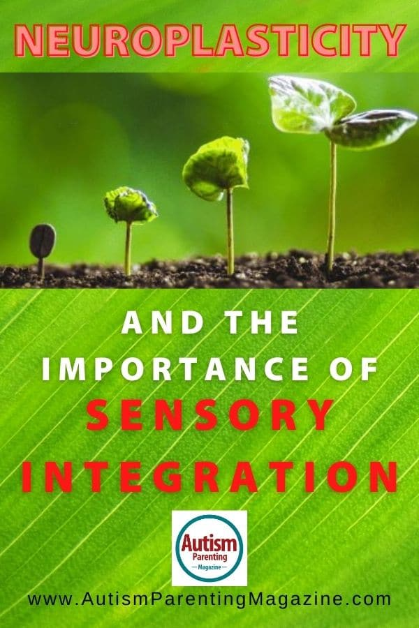 Neuroplasticity and the Importance of Sensory Integration