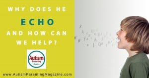 Why Does He Echo and How Can We Help?