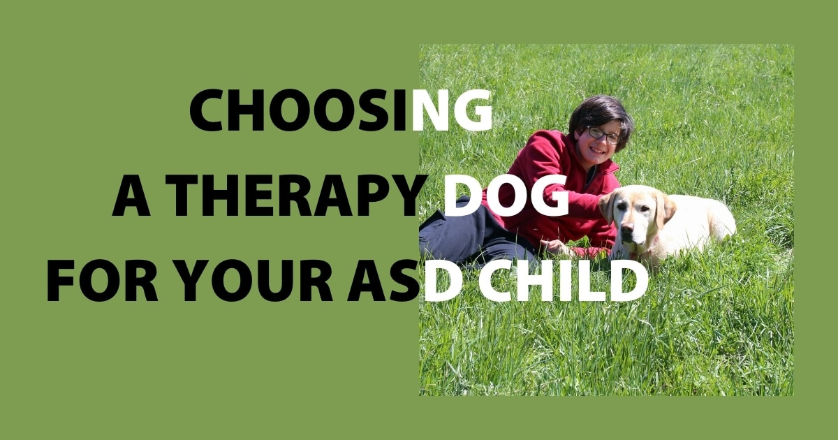 Here are three tips that could help you make the right decision when choosing a therapy dog.